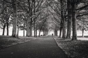 Woodhouse Moor, May 2021 Mark Skeet Photography